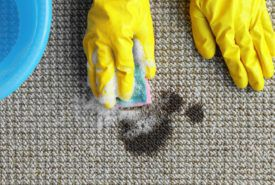 6 easy ideas for best carpet stain removers
