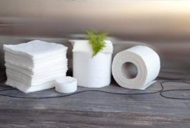 Best paper towel wholesale shops