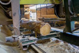 How to choose a portable sawmill?