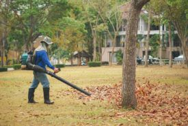 Tips for buying a gas leaf blower